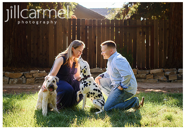 outdoor maternity session by the river with family dogs