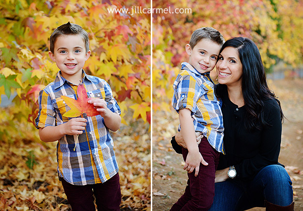 red yellow orange leaves are perfect for fall photos in november
