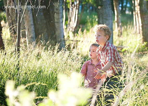 family pictures in a sunset meadow