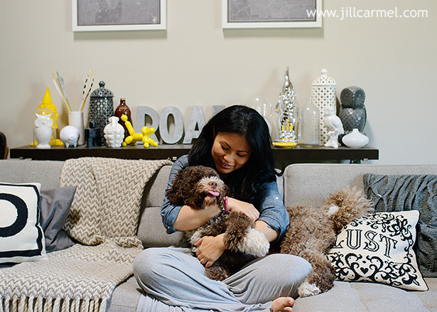 belly tickles with brown portuguese water dog in hip apartment