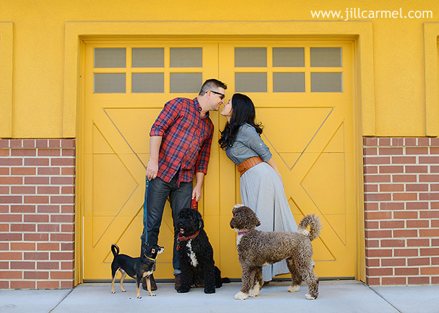 three dogs and kisses on a yellow background