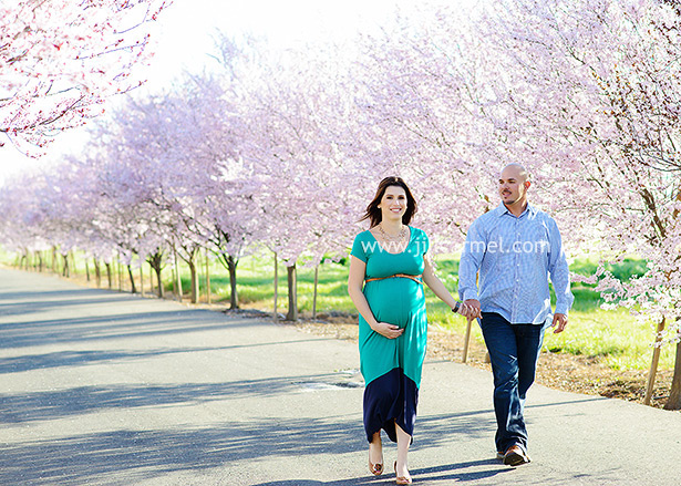 maternity photos in front of a row of pink blossoming trees in the spring