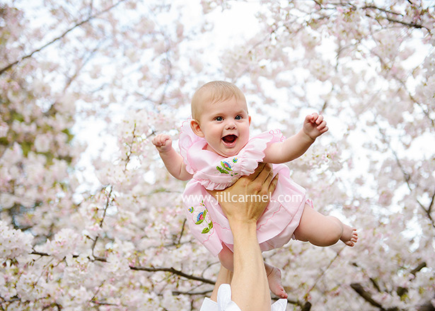 the state capitol is the perfect place for spring portraits with cherry blossoms