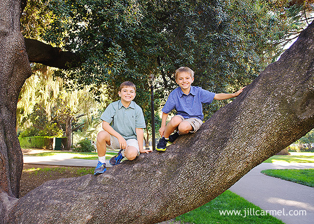 boys in blue shirts love to climb trees for their pictures at the capitol