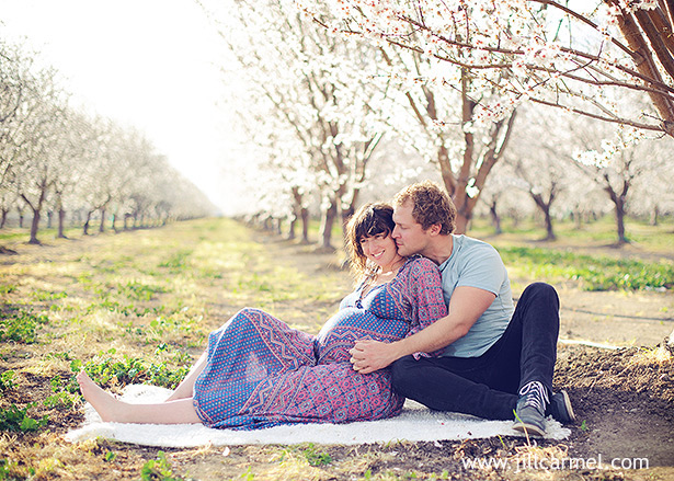 in the cherry orchard maternity pictures