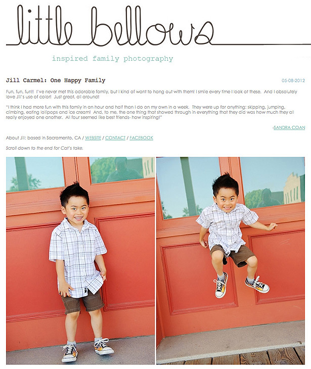 featured on the little bellows blog of inspired family photography