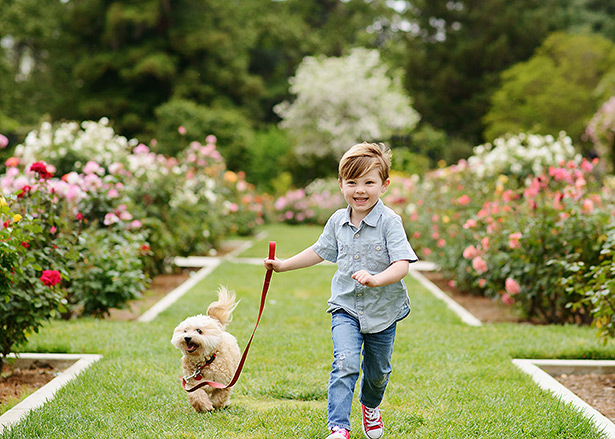 boy running with his dog through Mckinley Park rose flowers