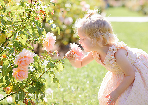 Little girl in pink dress smelling the roses in McKinley Park in Sacramento