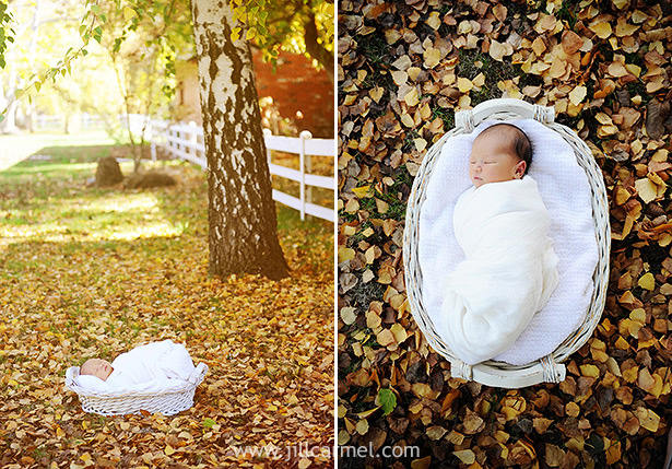 newborn baby in a basket in the fall leaves