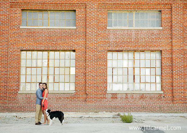 after-wedding photography session with their border collie dog at the old sugar mill sacramento