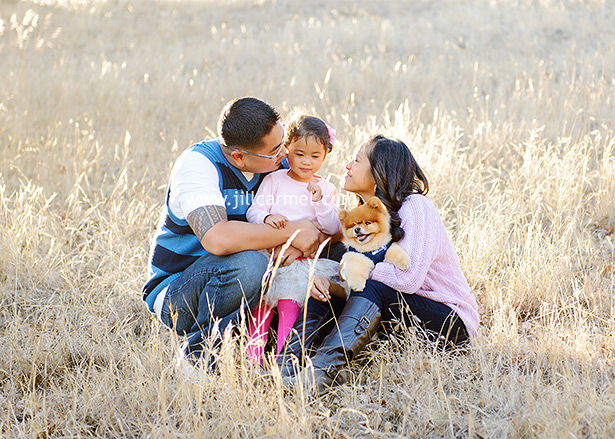 the family cuddles together in the tall grass at rockville park fairfield