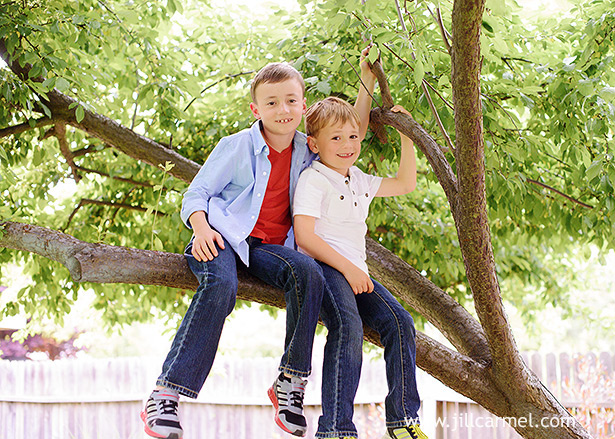 brothers climbed their favorite tree in the back yard for their sacramento photography