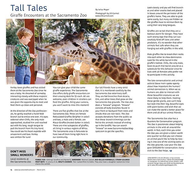sacramento_zoo_giraffe_portraits