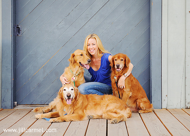 golden-retriever-dog-portraits (4)
