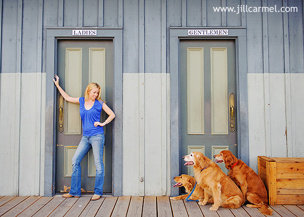 golden-retriever-dog-portraits (3)