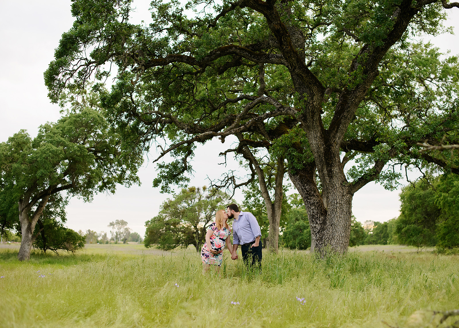 Pregnant couple kissing in field of grass next to a tree in Folsom