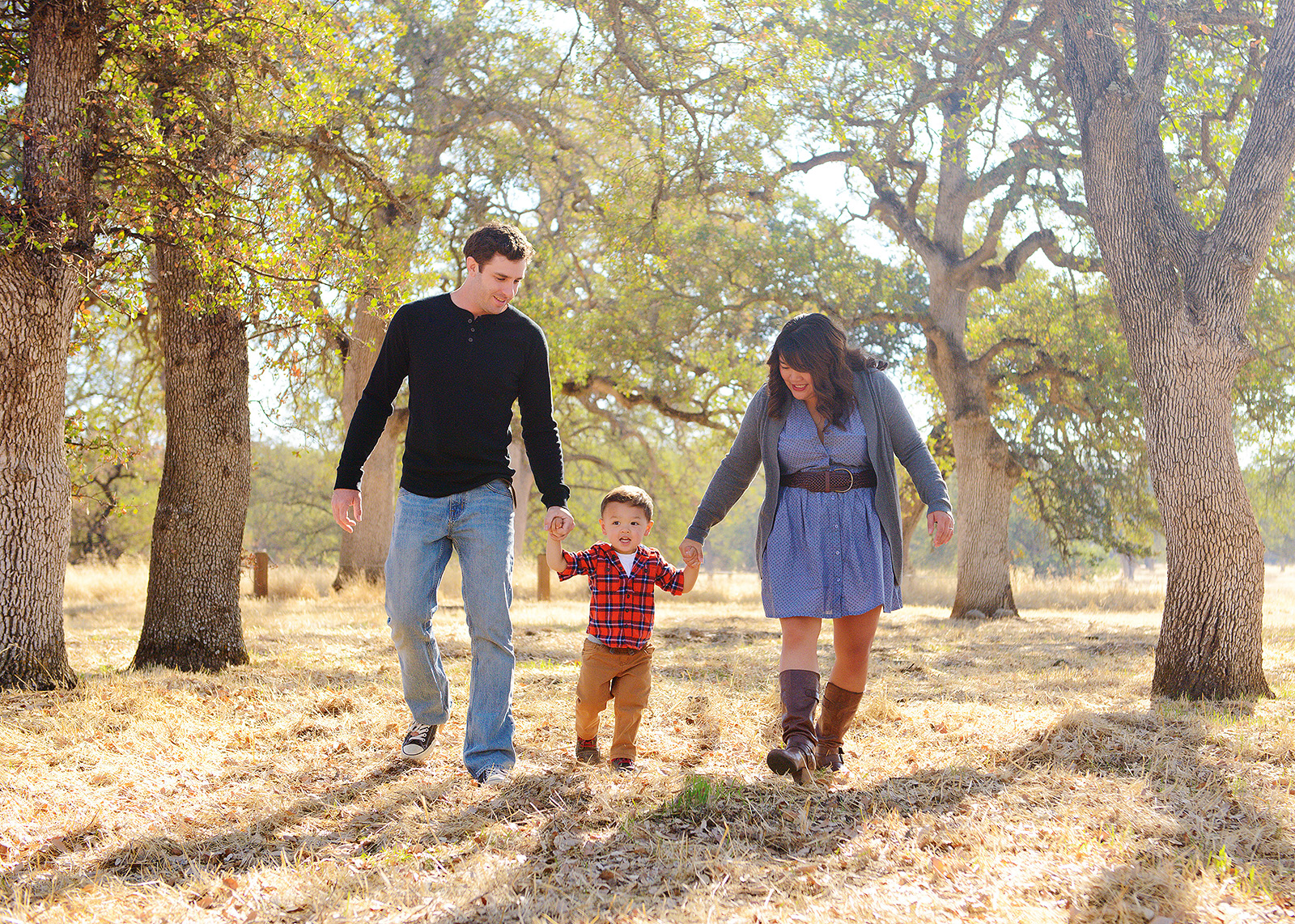 fair oaks family portraits in golden grass for fall pictures with photographer jill carmel