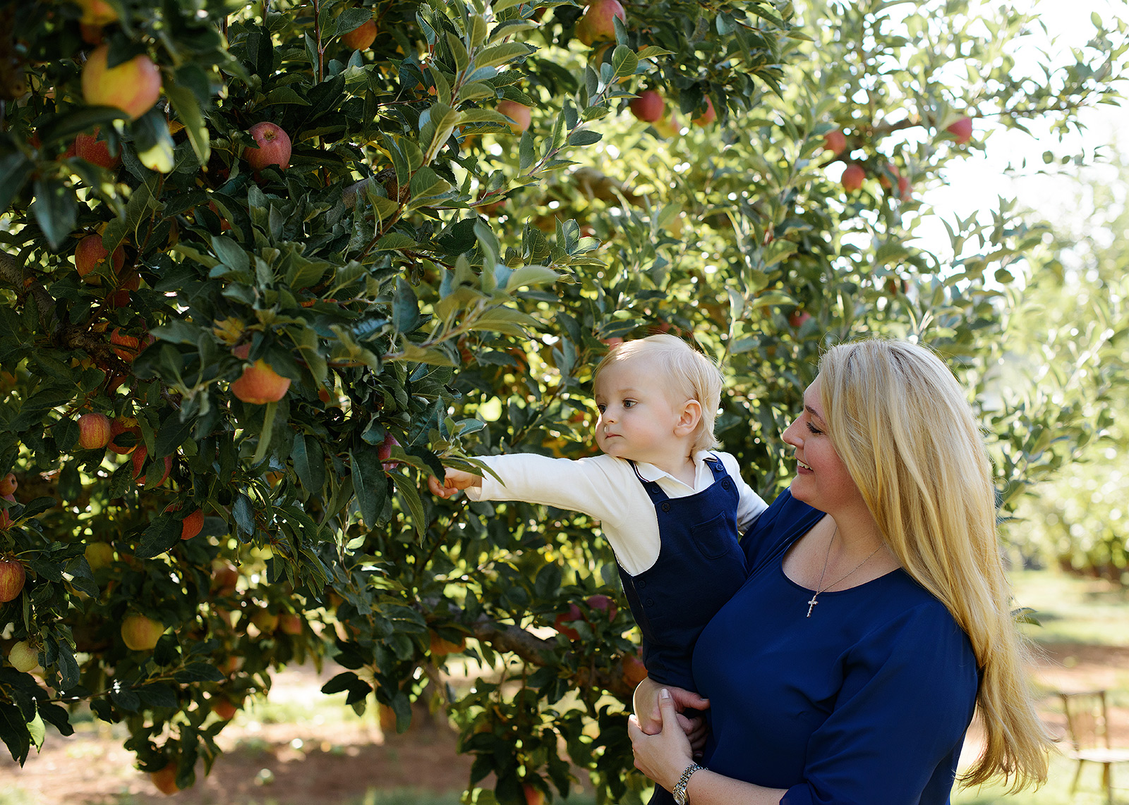Mother and Son Picking Apples in Apple Hill