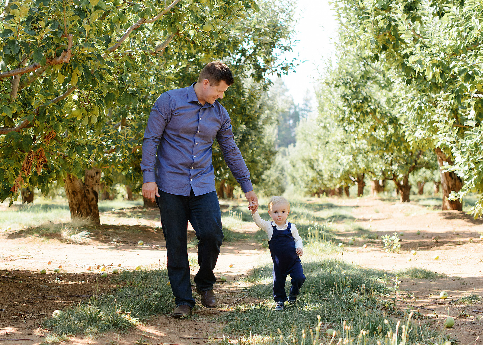 Father and Son Holding Hands in Apple Orchard in Apple Hill