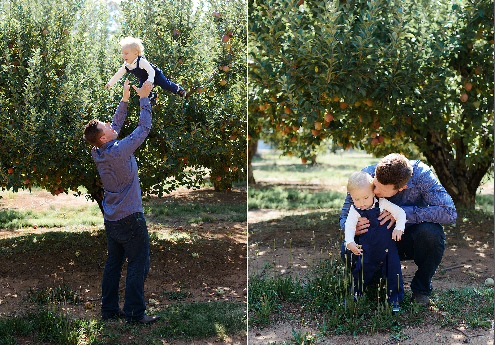 Father and Son Playing Among Apple Trees in Apple Hill