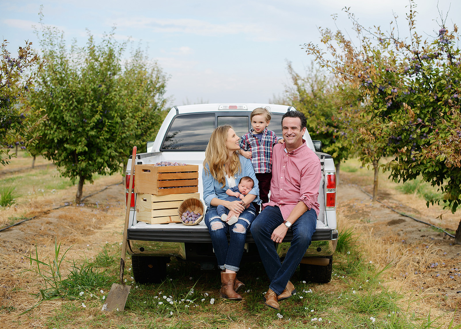 Family in the Back of a Truck on a Prune Farm