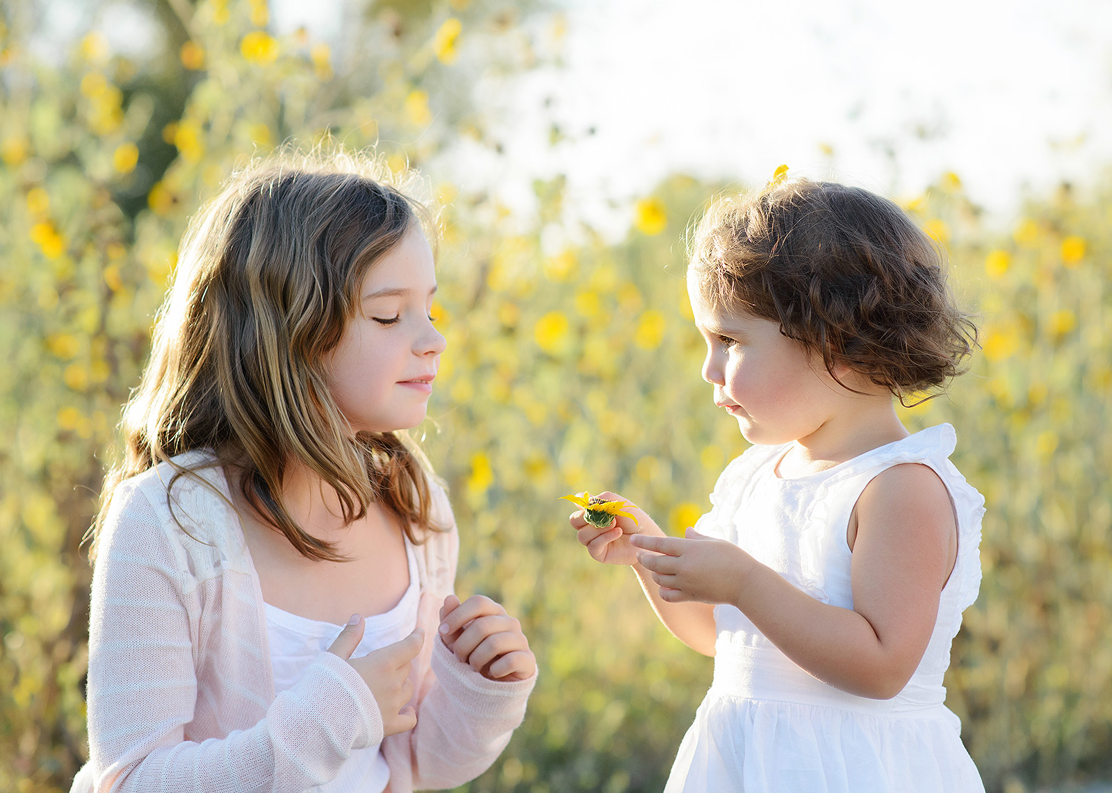 Sisters Talking in Natural Light with Yellow Wildflowers Background