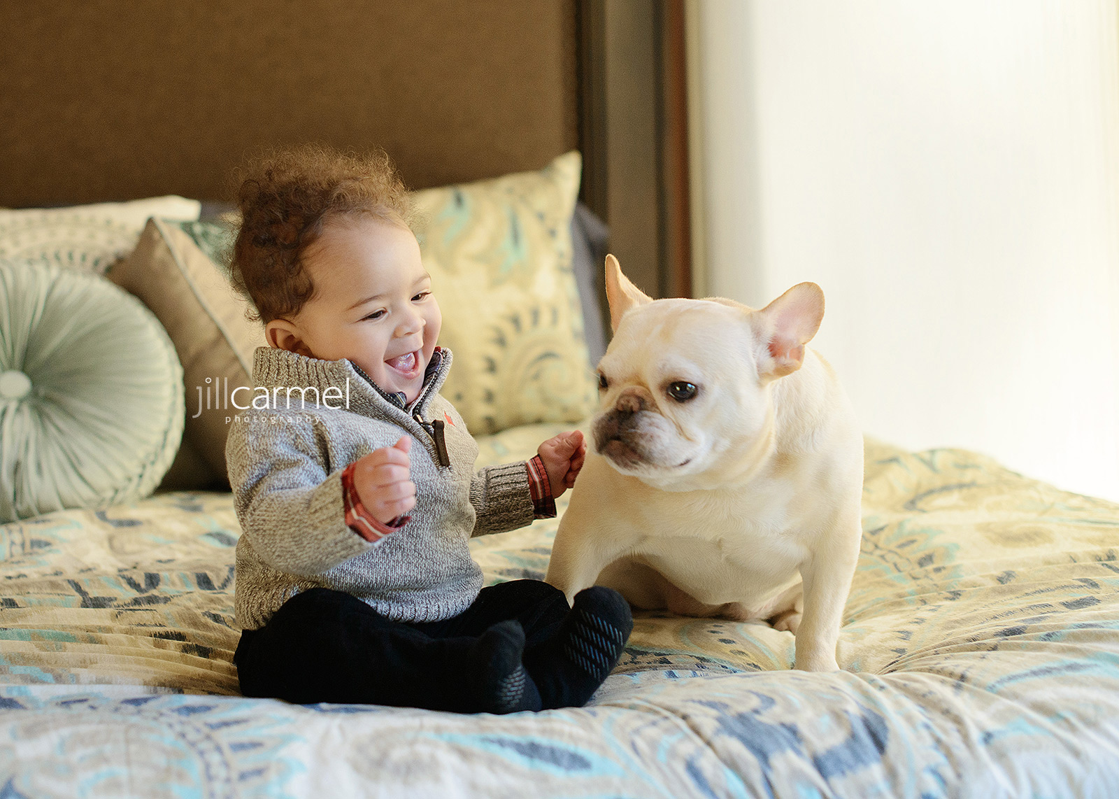 Vince Carter Baby Boy with French Bulldog on Bed