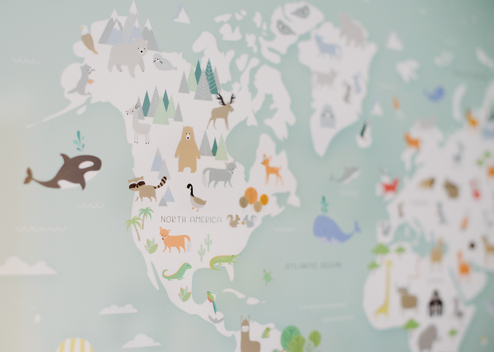 Print detail of map and animals of the world in baby boy nursery