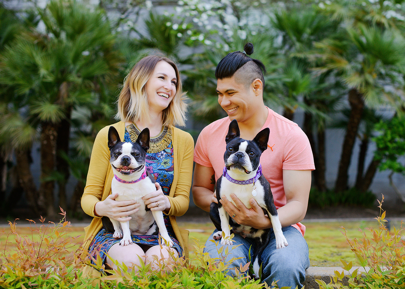 Colorful couple photo with their dogs on the grass at the Sacramento State Capitol