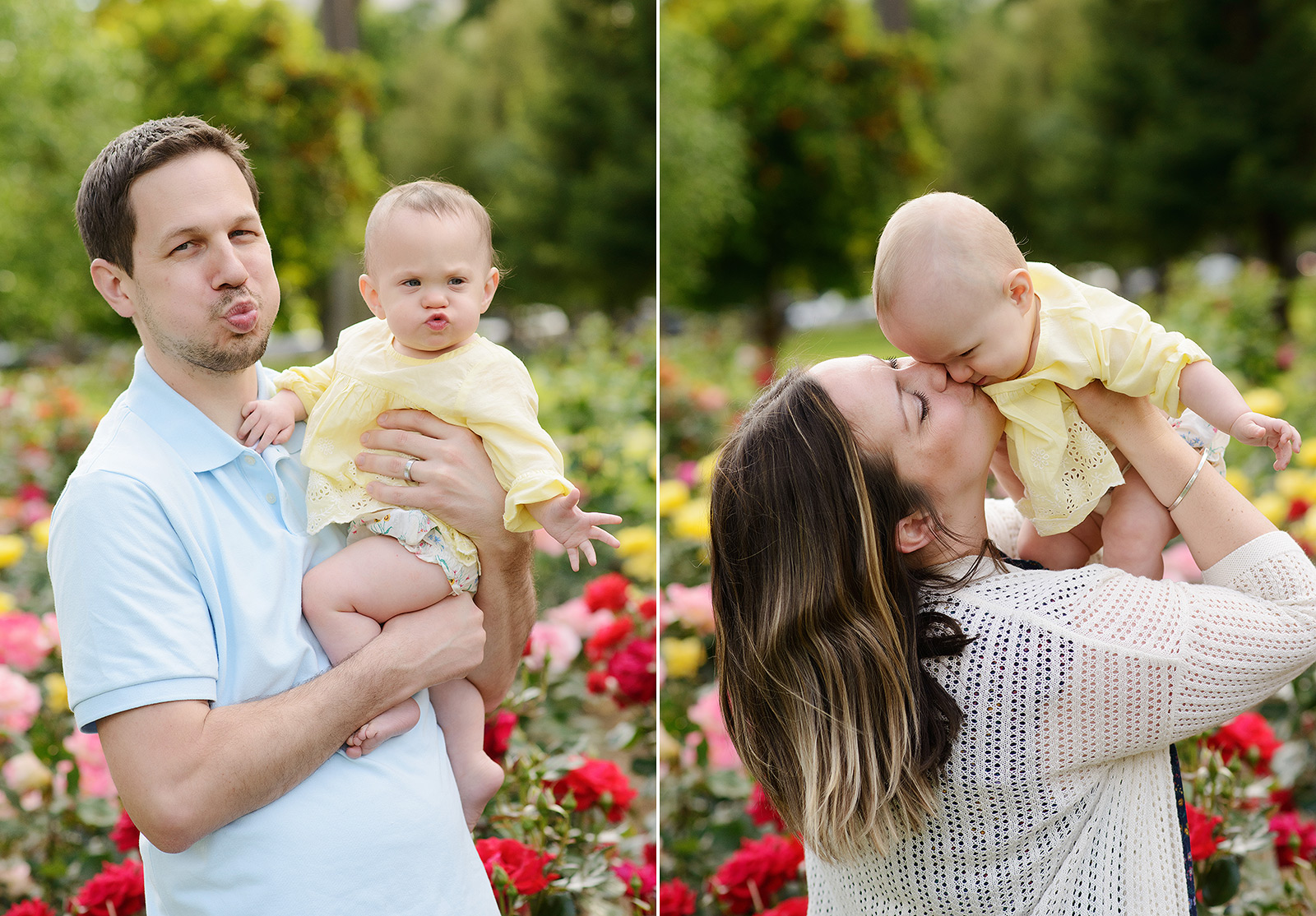 Dad doing kissy face with baby twin daughter by red roses at Sacramento State Capitol