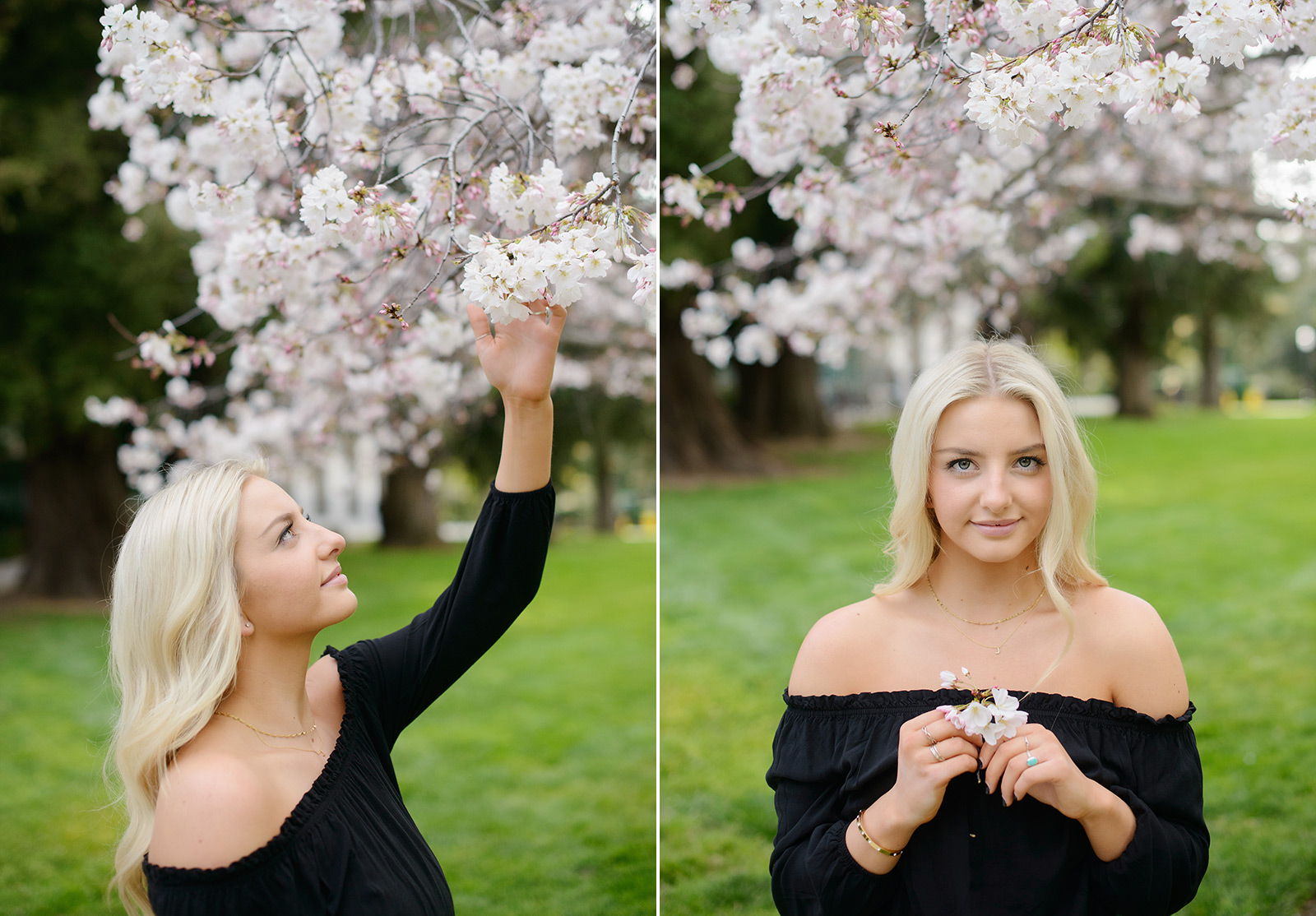 Senior portrait of blonde girl under the cherry blossoms at State Capitol