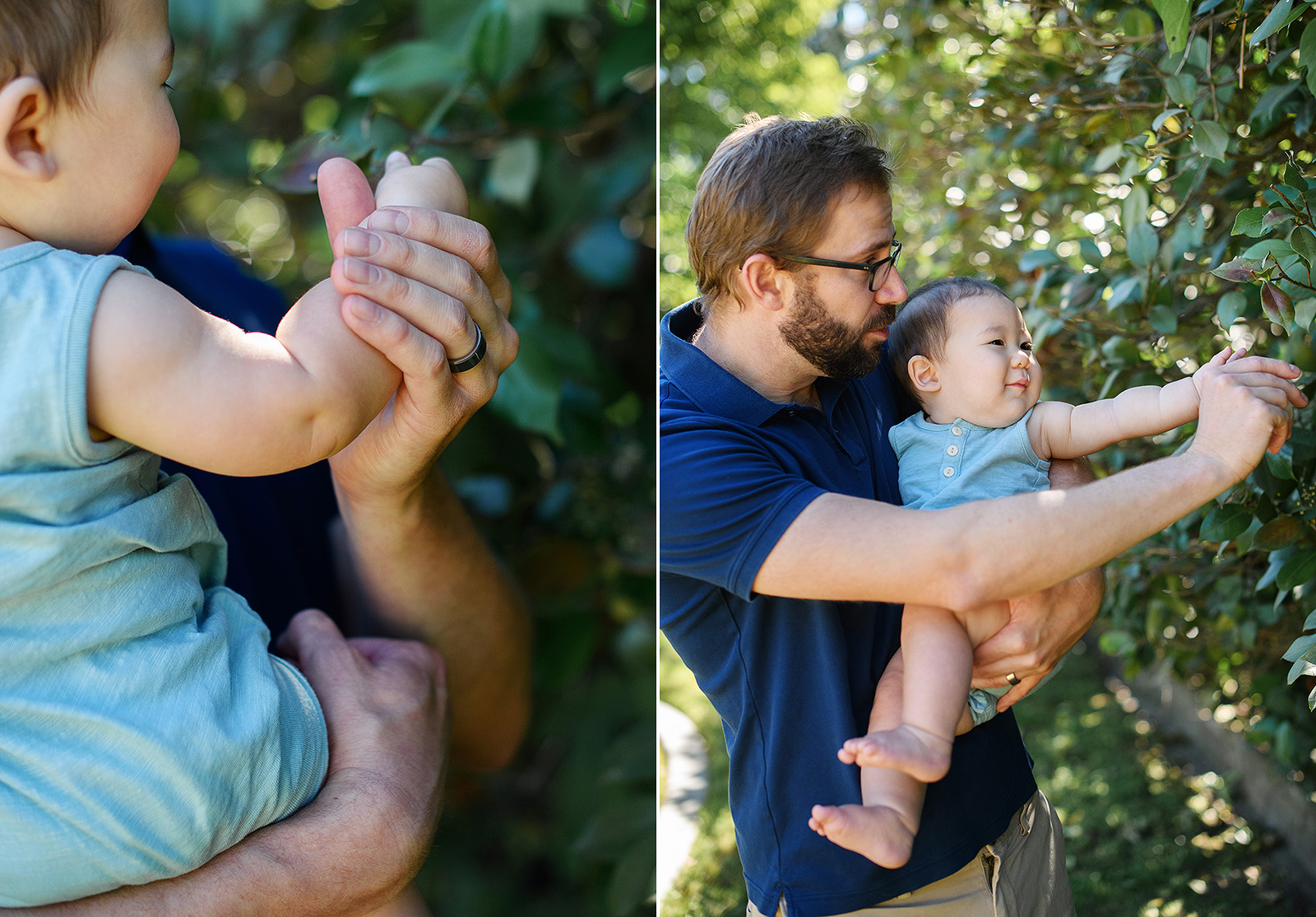 6 month old baby boy touching leaves with dad wearing blue