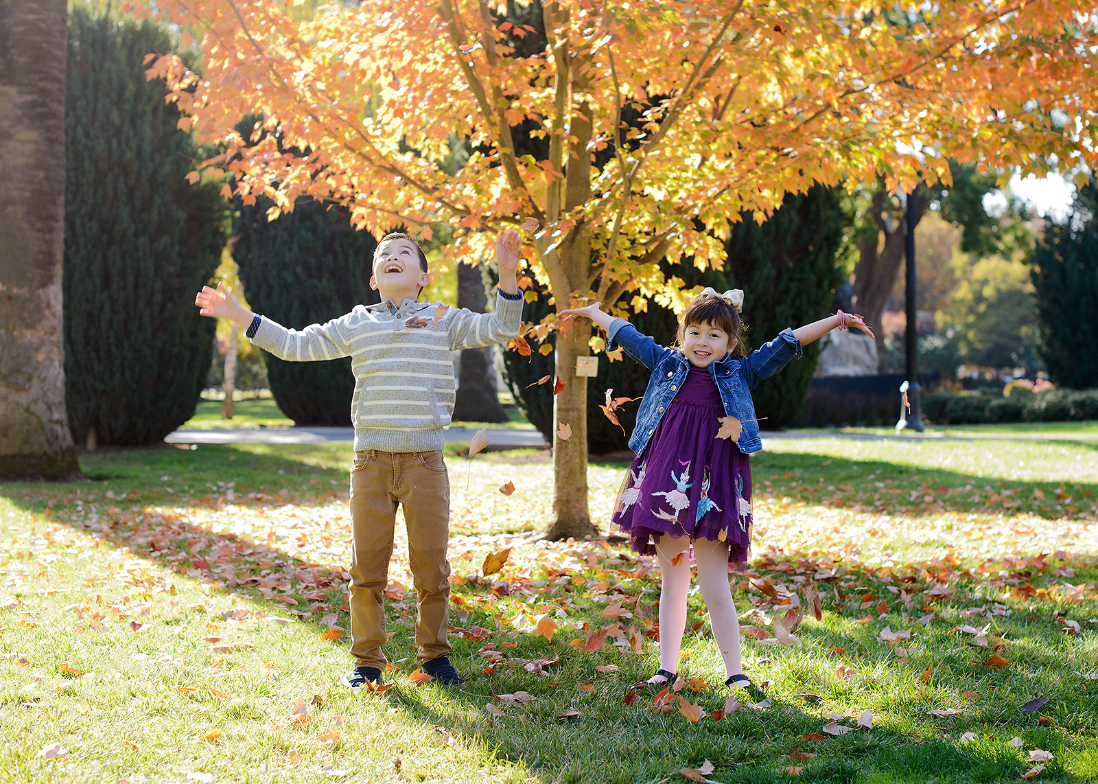Brother and sister playing in the leaves outside of Sacramento State Capitol during autumn