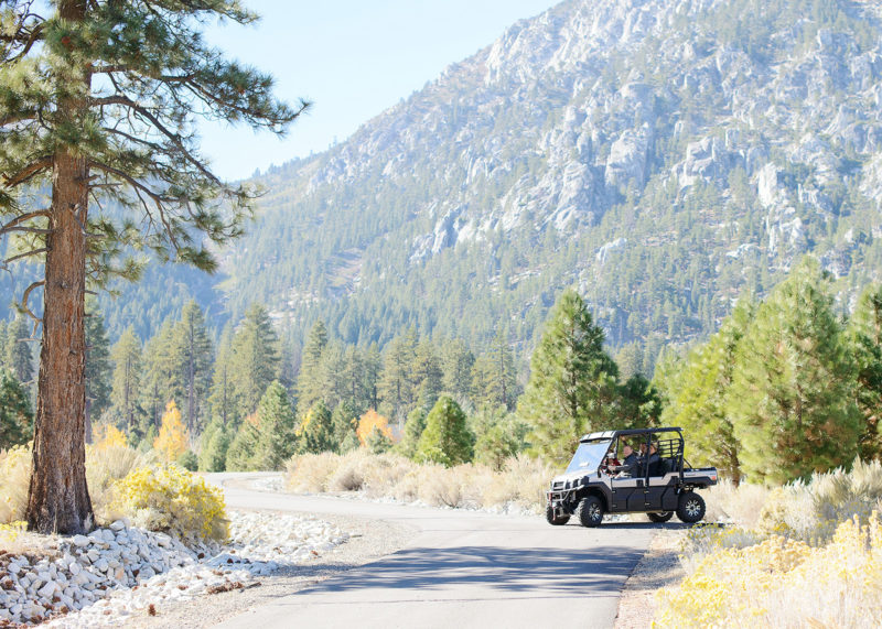 Landscape shot of jeep driving with Nevada mountains and pine trees in background