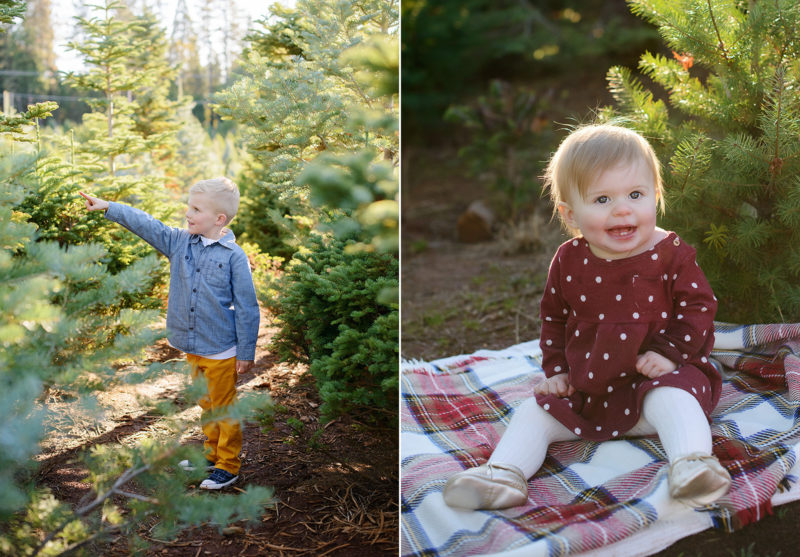 Little boy pointing at pine trees and little girl sitting on flannel blanket in Apple Hill