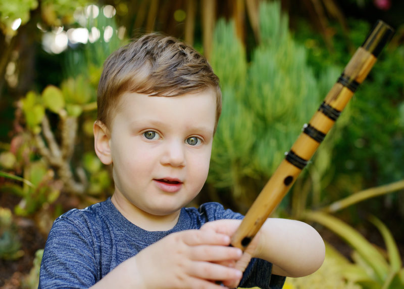 Little boy holding stick close up