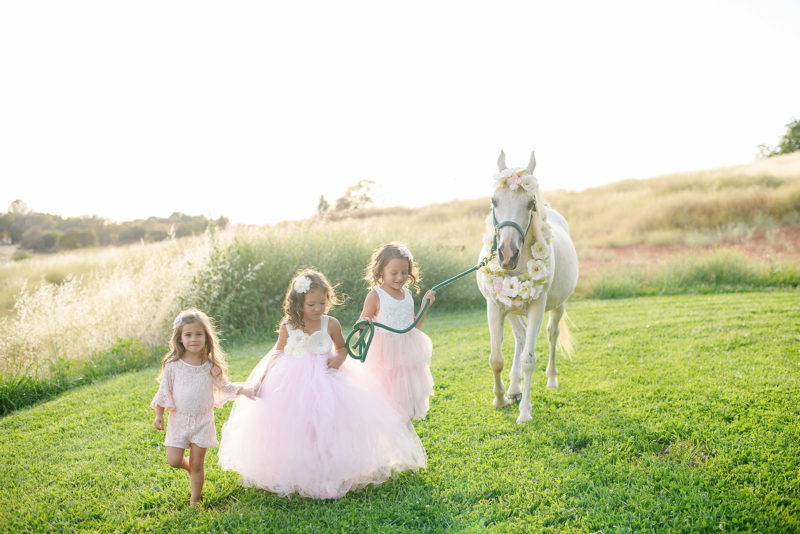 Little girls wearing pink tutus walking with a white horse on a meadow