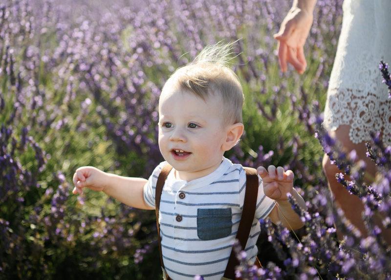Sacramento photographer Jill Carmel, photographing one year old boy running through lavender fields in Dixon