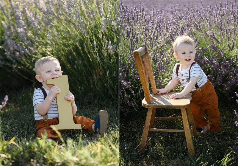Sacramento photographer, Jill Carmel, photographing one year old boy posing with chair and number one in lavender fields in Dixon
