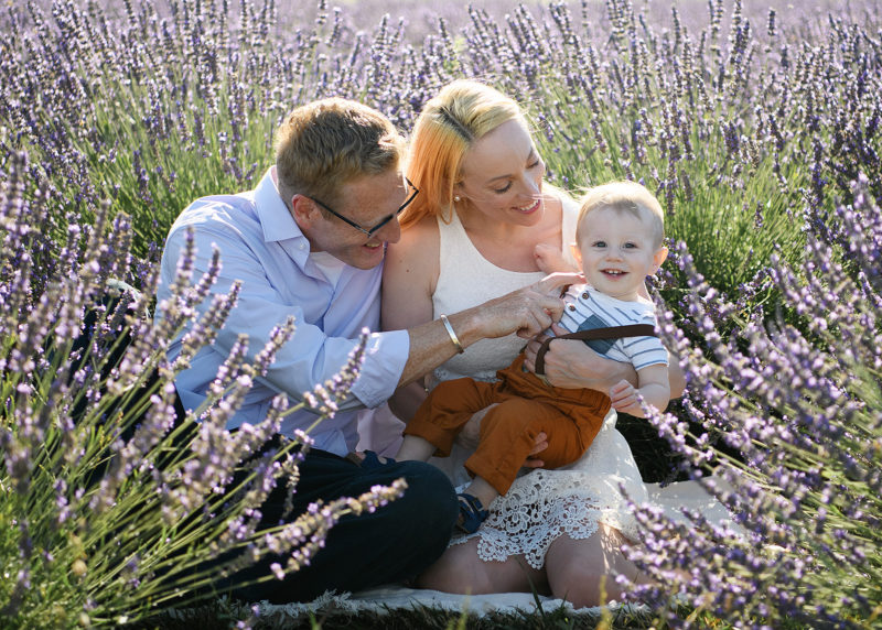 Sacramento photographer, Jill Carmel, photographing mom and dad holding one year old smiling son in the Dixon lavender fields