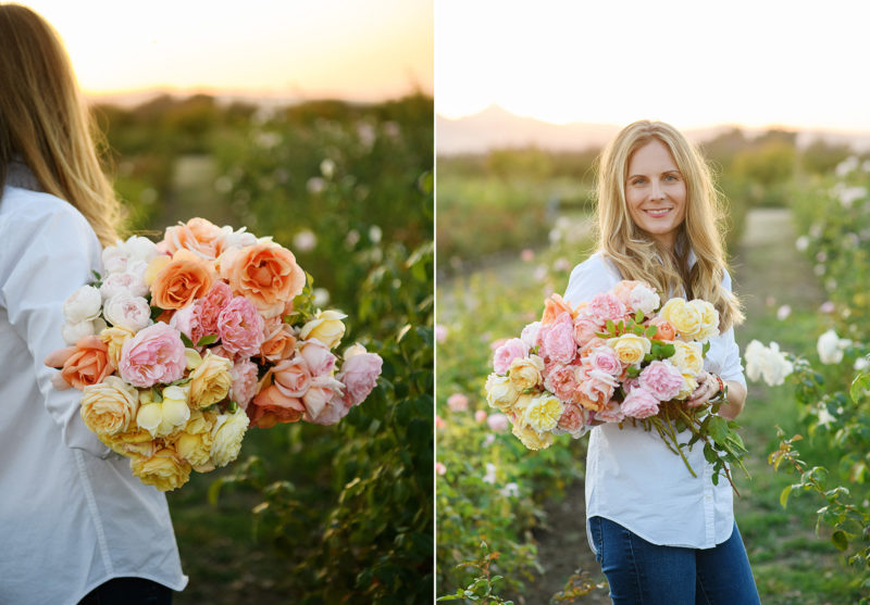 Woman holding bouquet of yellow and pink roses in the middle of flower farm in Sacramento Valley