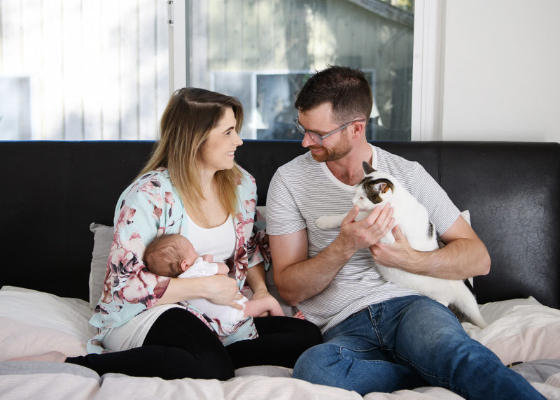 Mom holding newborn baby as dad holds on to cat in bed at home lifestyle photo