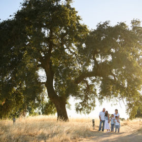 Family under a large oak tree wide shot in dry grass in Sacramento