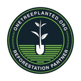 reforestation jill carmel_2