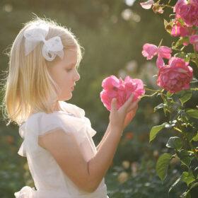 Little girl smelling pink roses at McKinley Park Rose Garden Sacramento