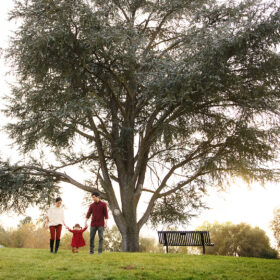 Mom and dad holding toddler daughter's hands under a large tree in Rancho Cordova Park