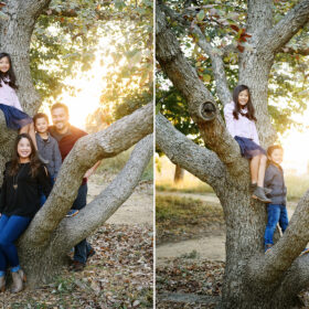 Mom and dad and son and daughter climb a tree in Davis