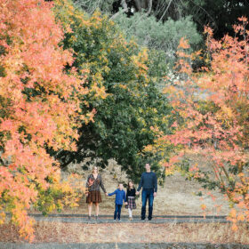 Long overview shot of family standing next to fall foliage trees in Sacramento