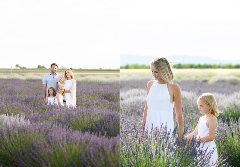 Family in a field of lavender as mom holds daughter's hand in Araceli Farms Dixon