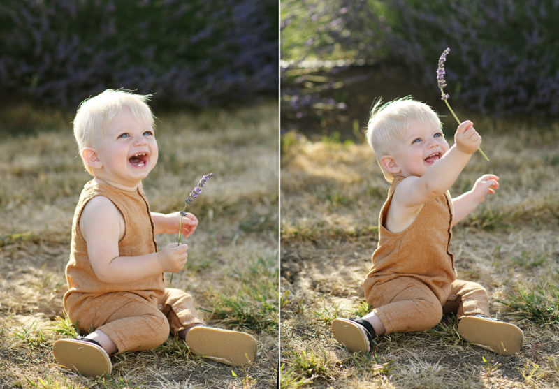 Toddler boy smiling and playing with lavender while sitting on dry grass in Dixon